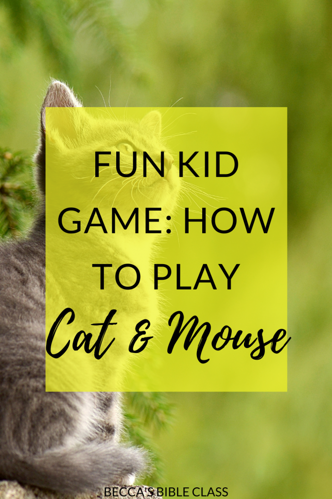 Cat and mouse is a really fun kid game that my Children's Church students love to play! It is an active game, and perfect for Sunday School or anything else. Becca's Bible Class